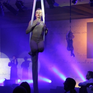 Aerialists08