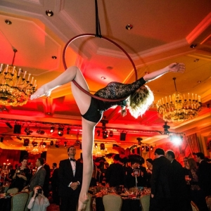 Aerialists12