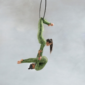 Aerialists13