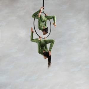 Aerialists14