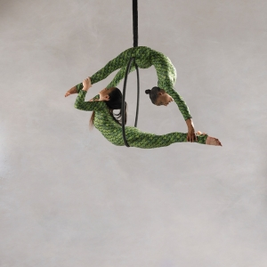 Aerialists16