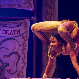 Contortion-Show